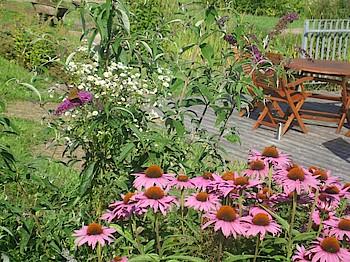 Gartenvielfalt am HdN